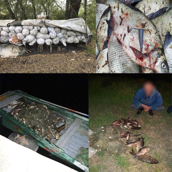 Протягом травня у порушників вилучено 314 заборонених знарядь лову та нараховано  202 тис. 603 грн збитків,- Запорізький рибоохоронний патруль