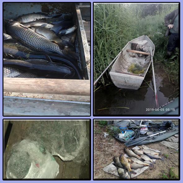 Запорізький рибоохоронний патруль за тиждень вилучив 161 кг незаконно добутих водних біоресурсів