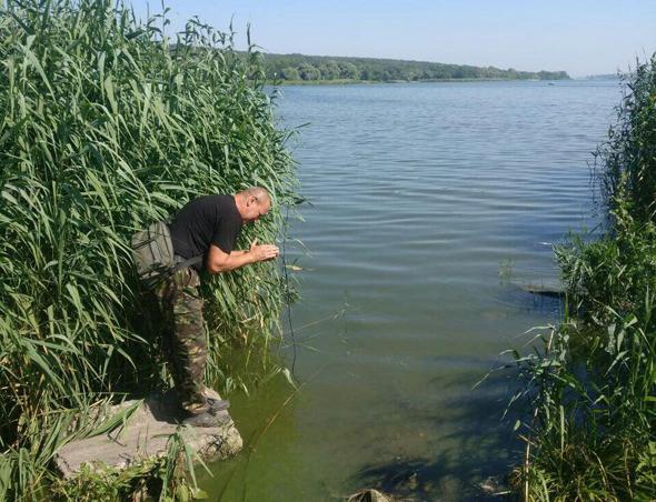 Через аномальну спеку на водоймах Запоріжчини значно підвищився ризик виникнення явищ задухи риби