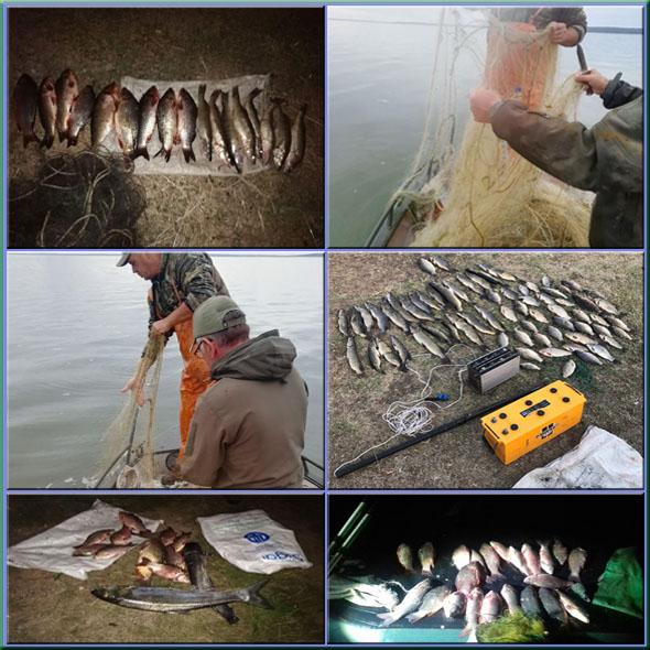 У вересні вилучено майже чотири тонни незаконно добутої риби,- рибоохоронний патруль Запоріжчини