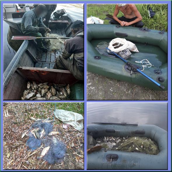 За липень виявлено 83 порушення в сфері рибальства,- Запорізький рибоохоронний патруль