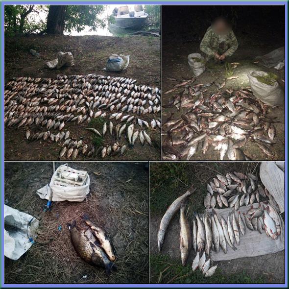 За місяць викрито 153 порушення природоохоронного законодавства, - Запорізький рибоохоронний патруль